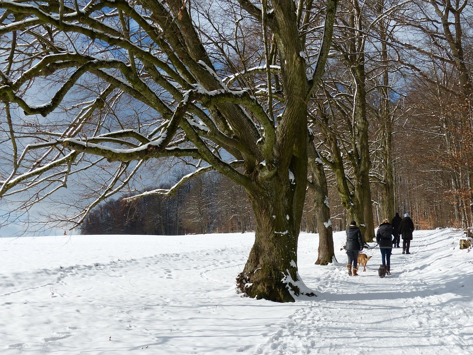froid, hiver, Montréal, massage, Globe Santé, massothérapie